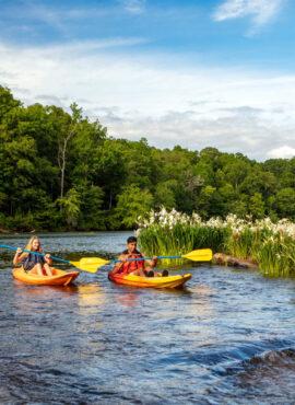 Canoeing at Horseshoe Bend National Park (alabama.travel.com)