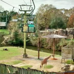 Montgomery Zoo Lift (Tripadvisor.com)
